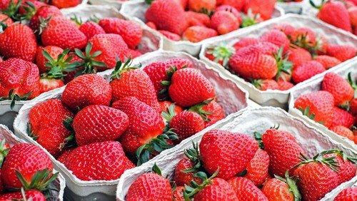 Es ist Erdbeer-Zeit!