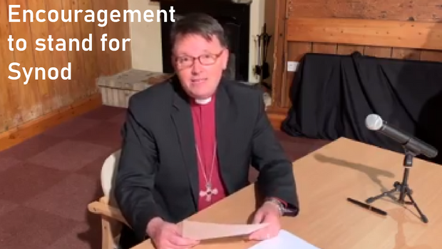 Would You Like To Stand For Synod?