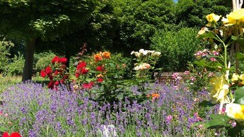 Die Natur, die Schöpfung und der Garten
