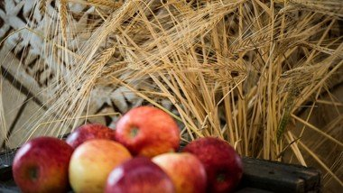 Høsten er i hus - aftensang i Ørum Kirke