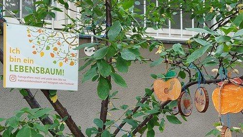 Besucht unseren Lebensbaum am Campus!