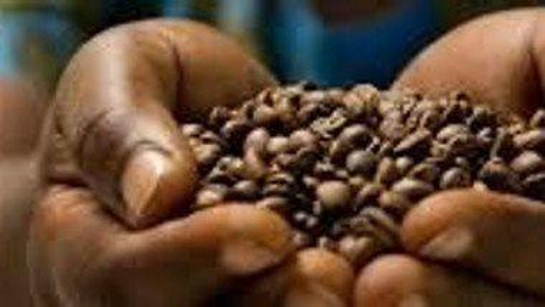 Kaffee-Vielfalt im Faire-Welt-Laden