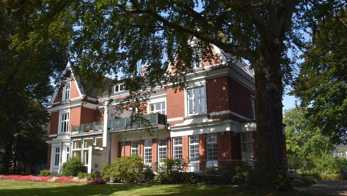 Die alte Rotbuche am Gemeindehaus verabschiedet sich