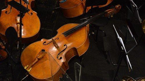 Niederurseler Kammerorchester sucht Mitspieler