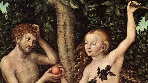Forbuden frugt smager bedst – en udflugt med æblepluk i fristelsens tegn