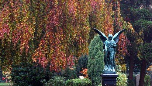 Livet med døden – en walk & talk om døden på  Friedhof Ohlsdorf