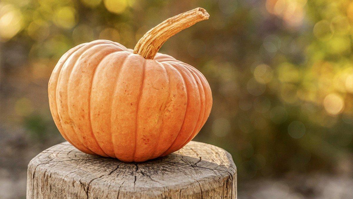 Halloween ved Johan Dalsgaard