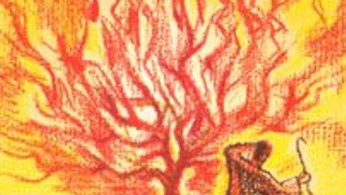 Das Geheimnis des brennenden Dornbuschs - KiBiWo 21