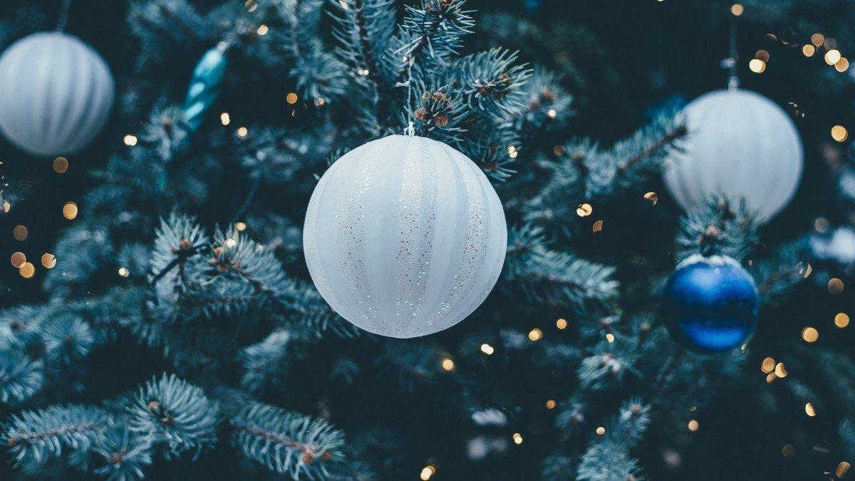 Juledagsgudstjeneste i Sdr. Bjerge kirke d. 25.12 kl. 11.30
