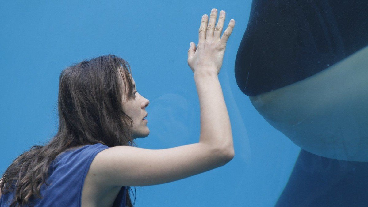 """Pitshanger Pictures - """"Rust and Bone"""" (15) 118 mins"""