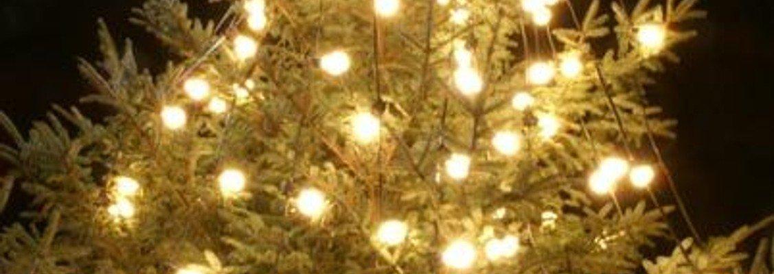 Juletræstænding i Eggeslevmagle