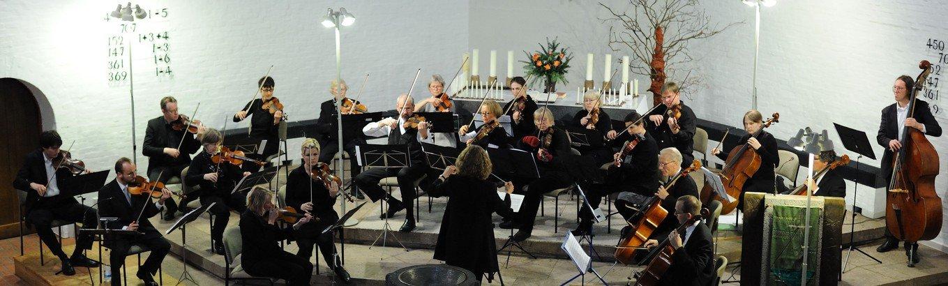 Herzlich Willkommen zum Konzert mit dem Walddörfer Kammerorchester
