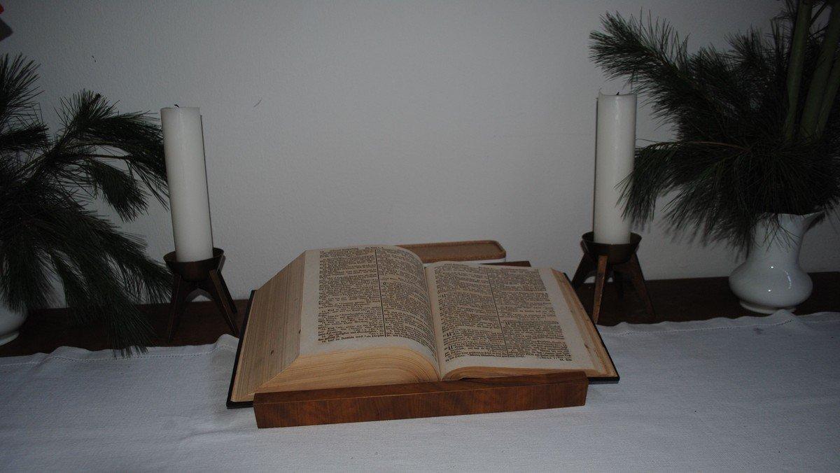 Bibellese