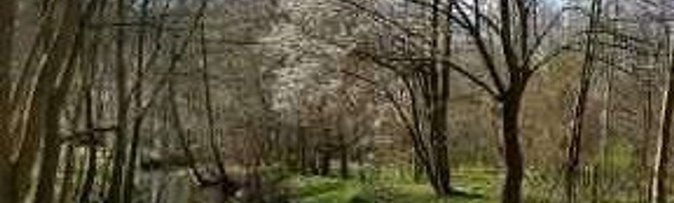 Forårs pilgrimsvandring