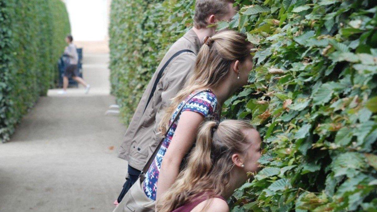 Kindergottesdienst: Entdeckt! Eine Geschichte aus einem Versteck ...