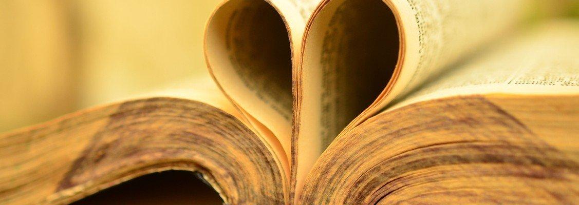 Bibleinfiltrators - Bibel lesen verstehen austauschen