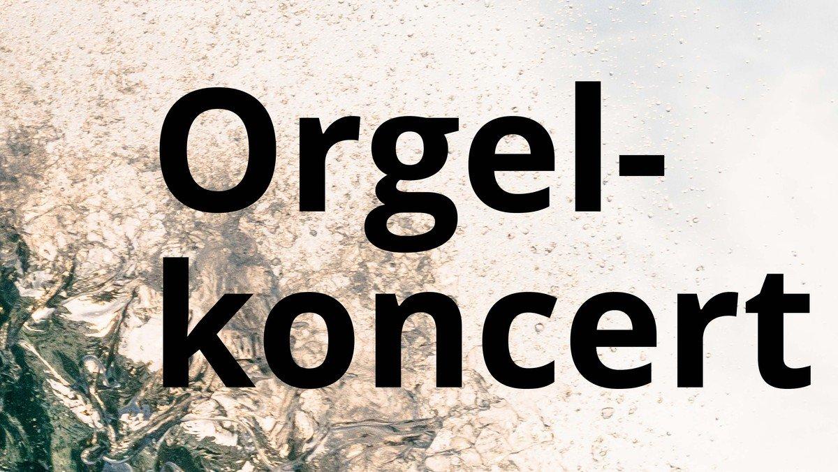Orgelkoncert i Vejleå Kirke