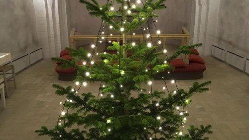 Juleafslutning børnehaver og daginstitutioner