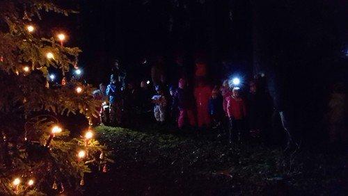 Waldweihnacht im Stadtwald