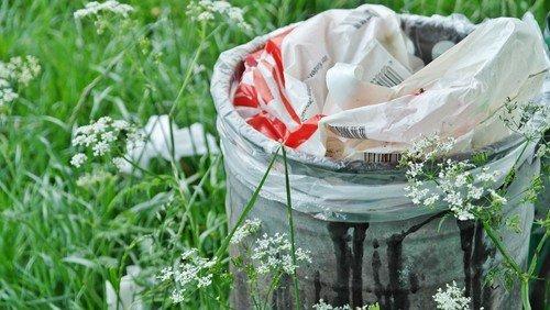 Plastikfreier Leben- wie geht das praktisch?