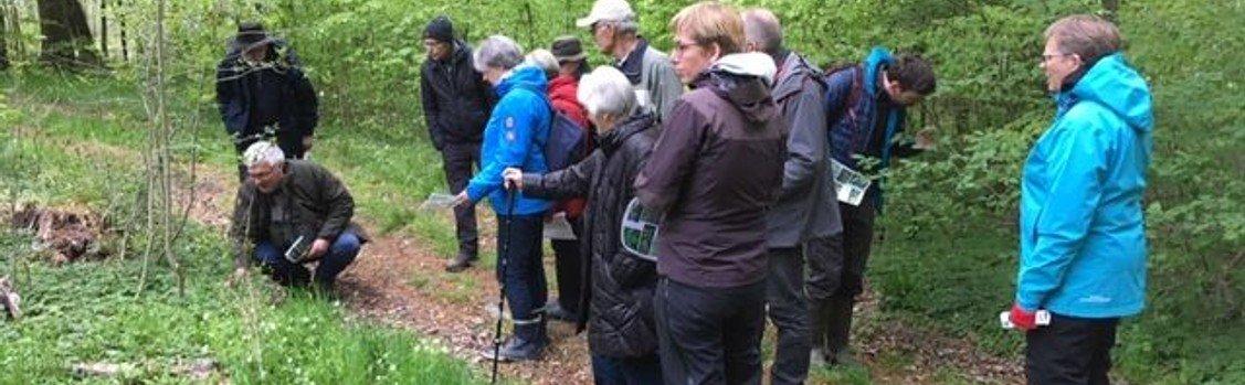 Tur i Søskoven med Peter Lange Tilmelding på sms eller opkald på 23 35 37 95