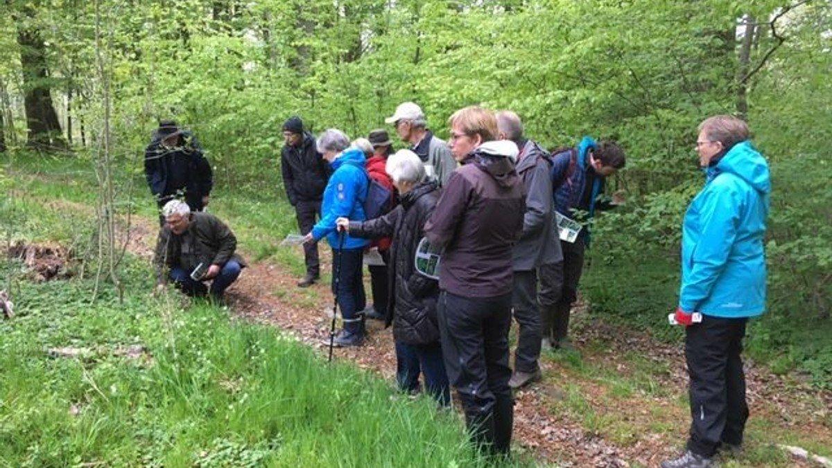 Tur i Søskoven med Peter Lange