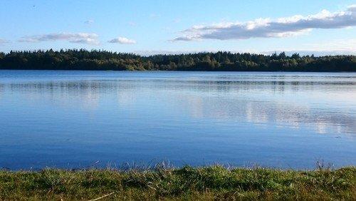 Friluftsgudstjeneste ved Hampen sø