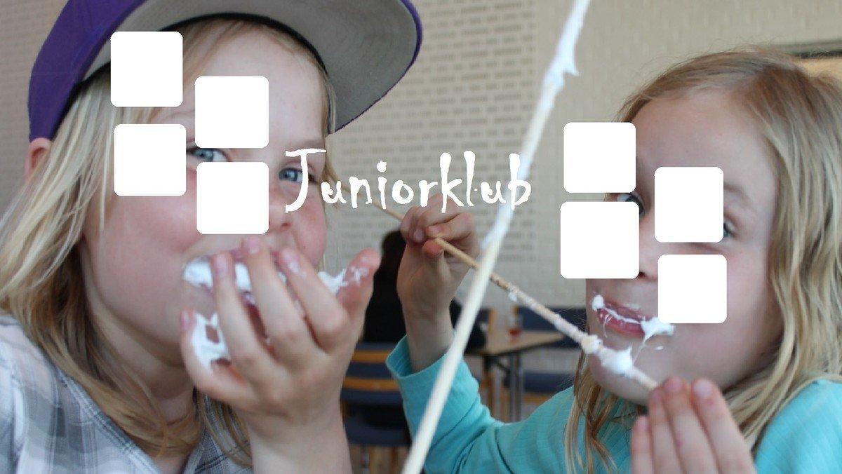 Juniorklub - sommerafslutning