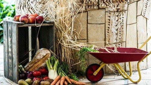 Høstgudstjeneste i Vindinge