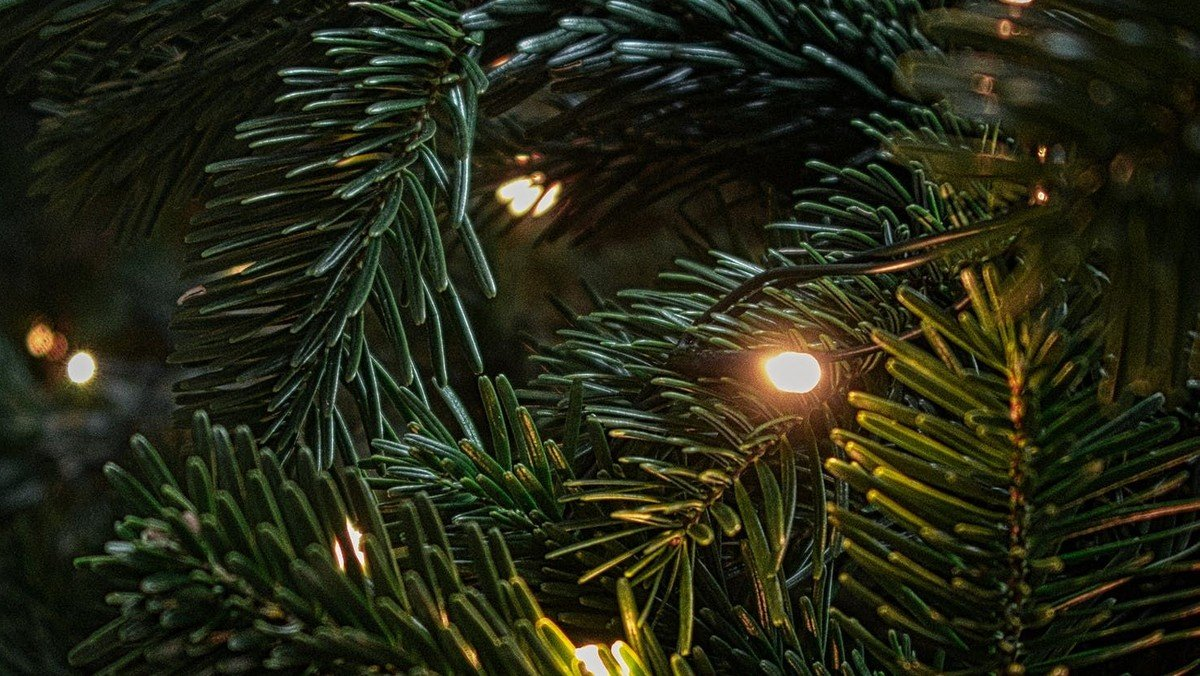 Juleaftensgudstjeneste for de lidt større v/Jonas Lucas Christy