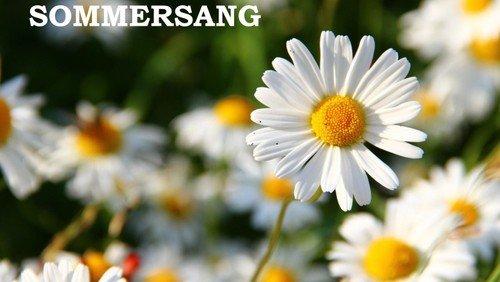 Sommersang i Vindinge