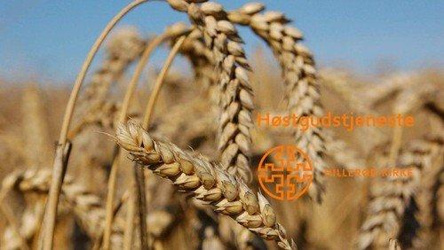Høstgudstjeneste - 15. søndag efter Trinitatis