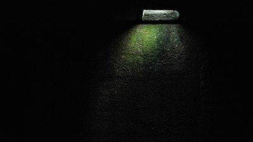 """""""Der lebenswichtige Lichtschimmer..."""" Gottesdienst am Ewigkeitssonntag"""