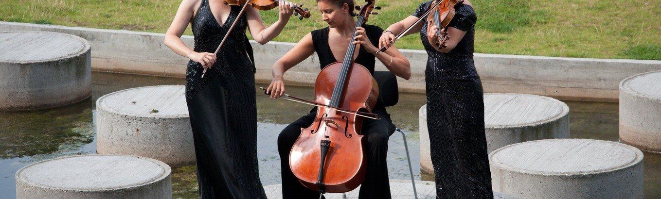 Koncert med Trio Sono