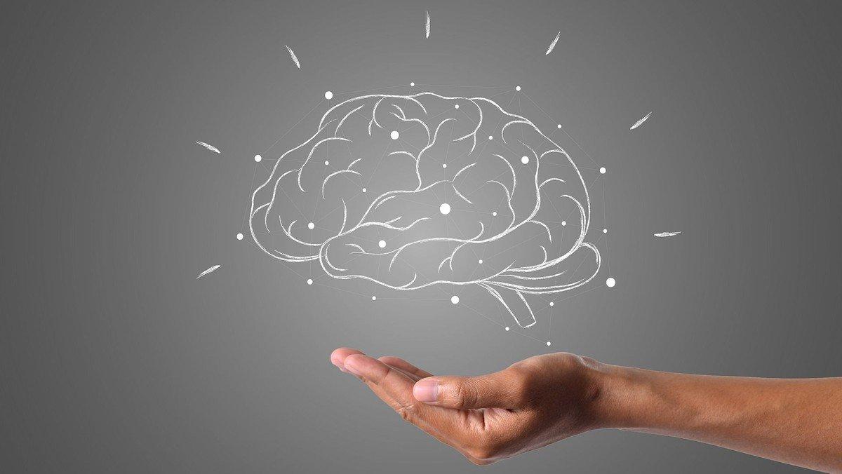 Kirkehøjskolen: GLÆDEN ved ... at have hjernen i behold