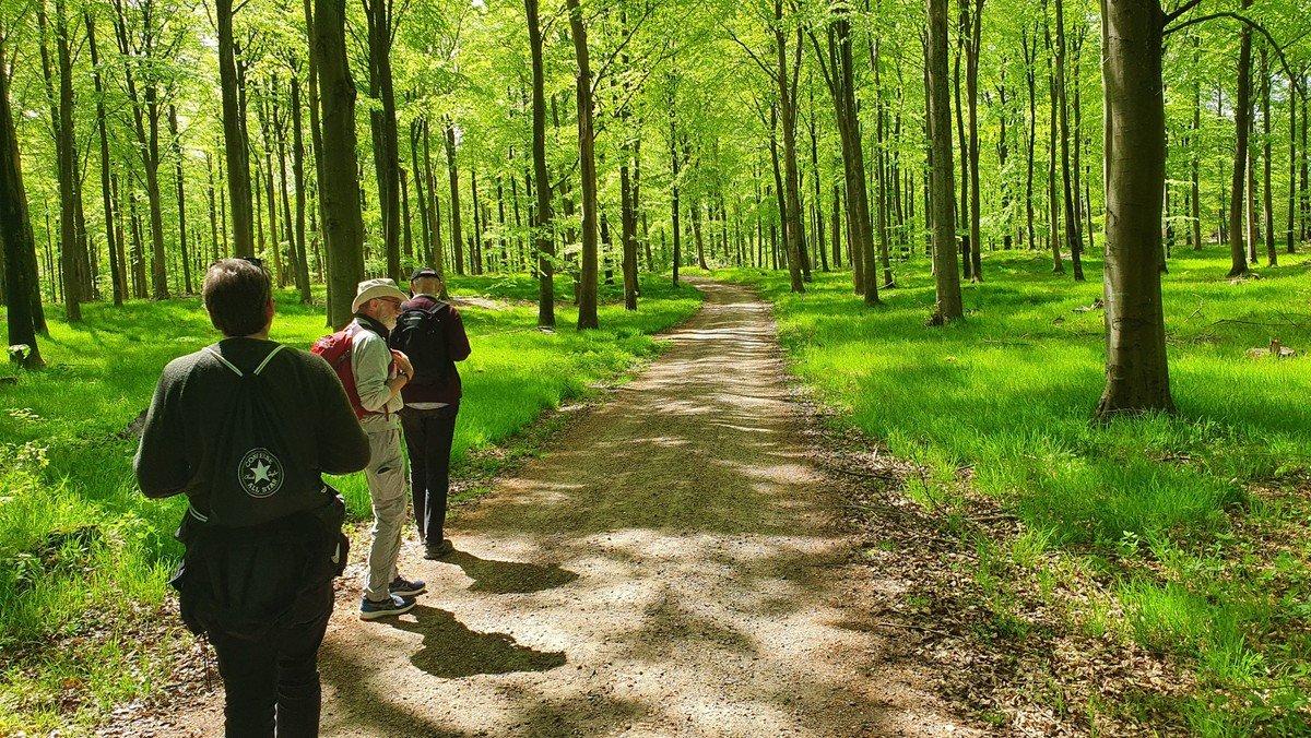 Pilgrimsvandring fra Hillerød til Farum