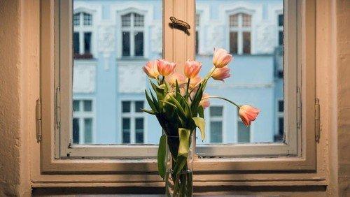 Foto: Lehmann