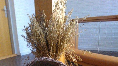 Høstgudstjeneste med Ad Hoc koret