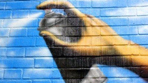 """""""Graffiti und StreetArt - aufgesprüht und hingeklebt"""" Ein Stadtrundgang"""