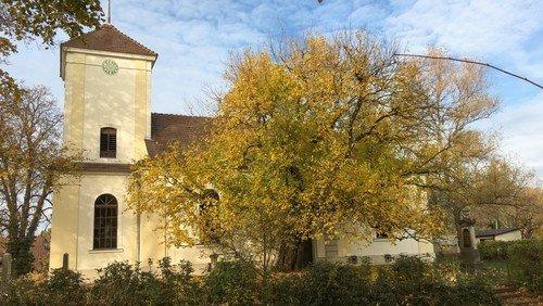 Gottesdienst in oder vor der Dorfkirche