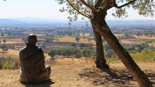 Eftermiddagsmøde: På rejse i Frans af Assisis landskab
