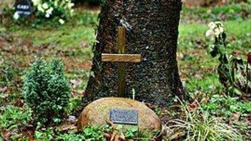 Gottesdienst zum Ewigkeitssonntag in Felsen