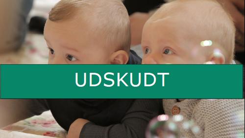UDSKUDT. Babysalmesang
