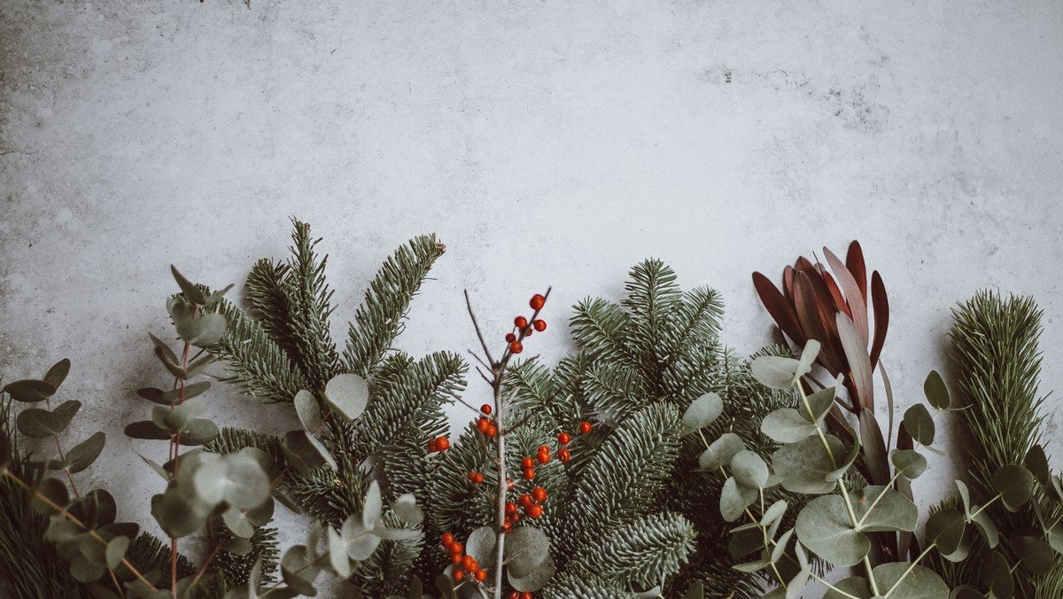 Torsdag kl. 12: Danske Kvinders julefrokost