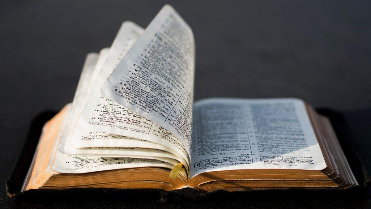 UDSKUDT: 100 Bibelhistorier