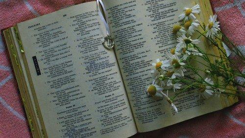 100 Bibelhistorier