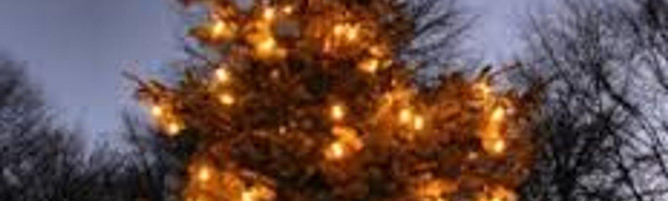 Juletræstænding  m. Borgerforening