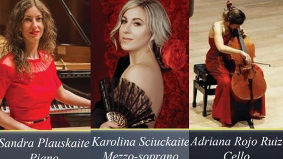 Musical og opera koncert