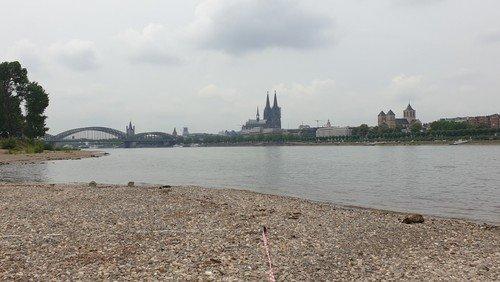 Gottesdienst zur Rheintaufe