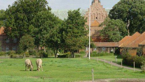 AFLYST - Informationsmøde om Sogneturen til Løgumkloster